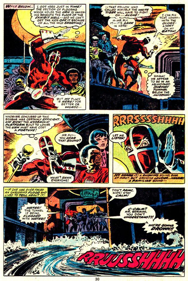 The Human Fly #8 by Bill Mantlo and Frank Robbins