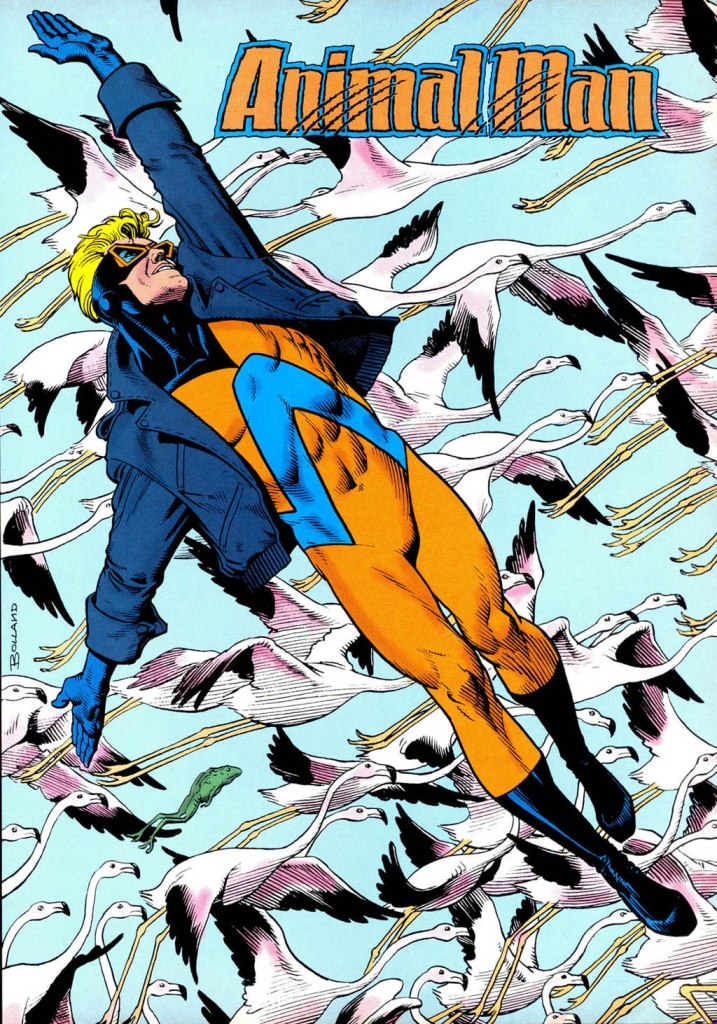 Who's Who in the DC Universe #14 - Animal Man by Brian Bolland